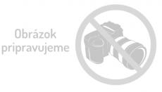 DJI Mavic 2 (DUAL) Enterprise Shield
