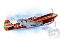 P - 40 Warhawk (711mm) laser.vyrezávaný