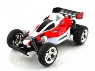 RC auto buggy Exceed