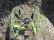 RC kvadrakoptéra Skywalker, zelená