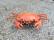 Krab na diaľkové ovládanie, oranžová