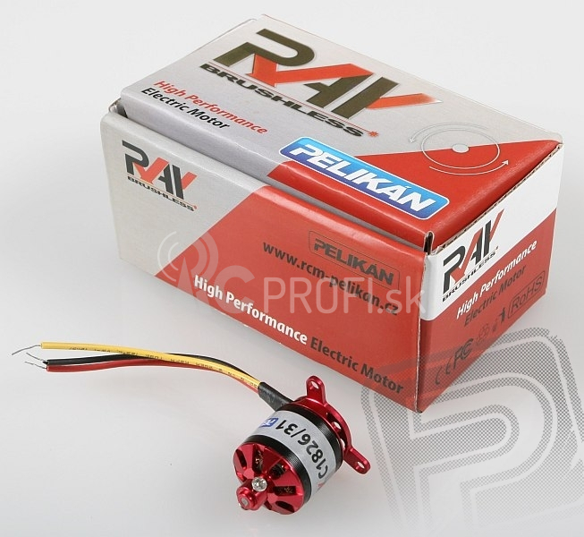 RAY C1826/31 outrunner brushless motor