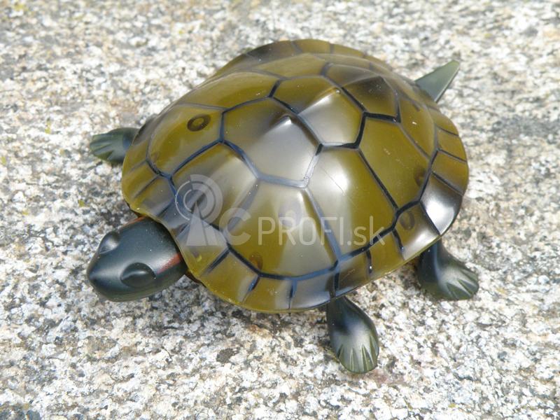 RC korytnačka